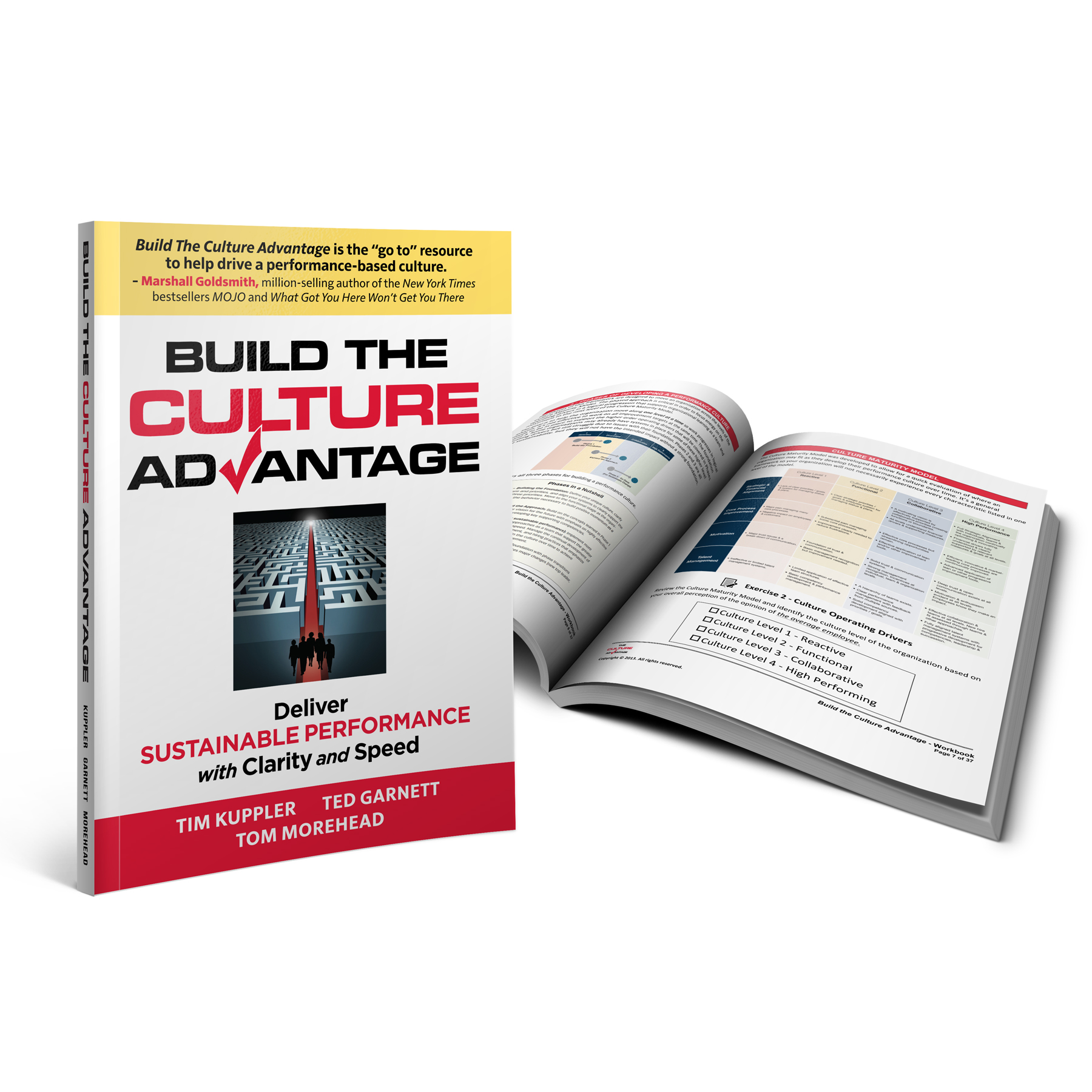 Build The Culture Advantage Book / Workbook Package