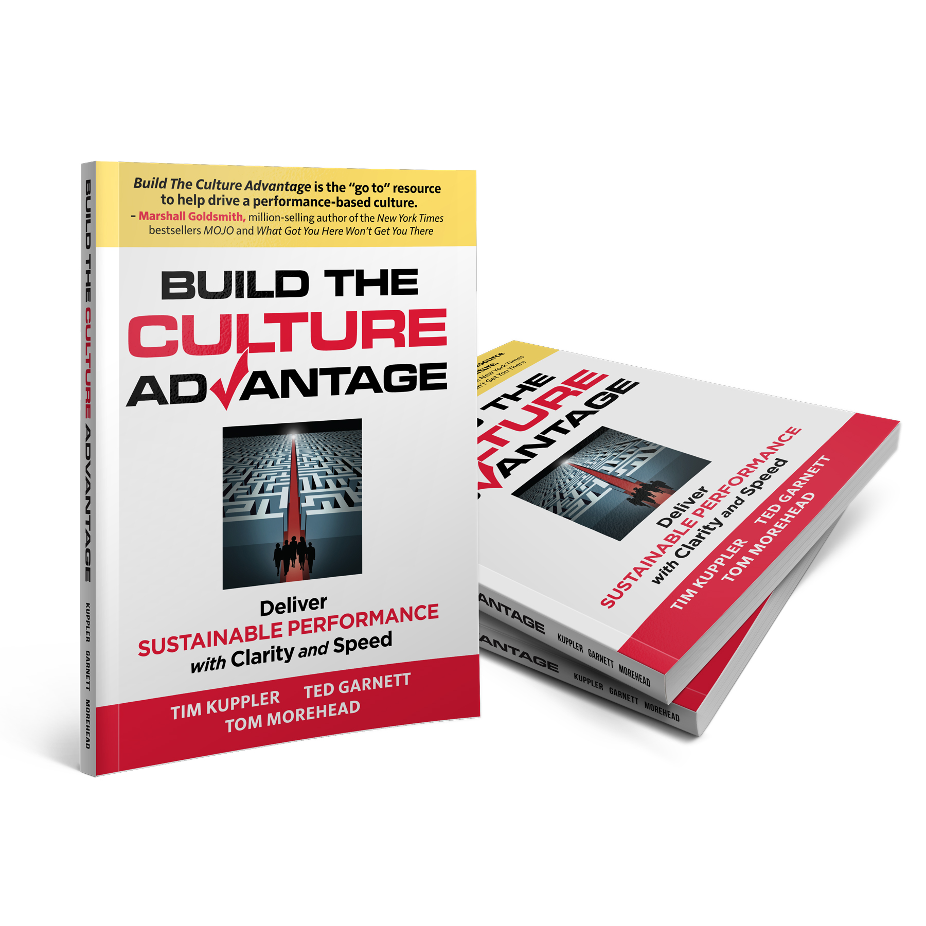 Build The Culture Advantage Book